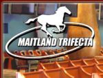 Maitland Trifecta
